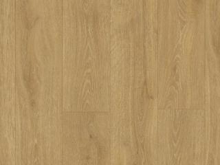 dub-lesnoj-massiv-naturalnyj-mj3546